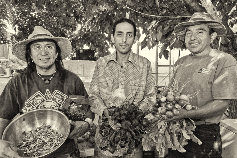 Fidel and workers with radishes and sprouts